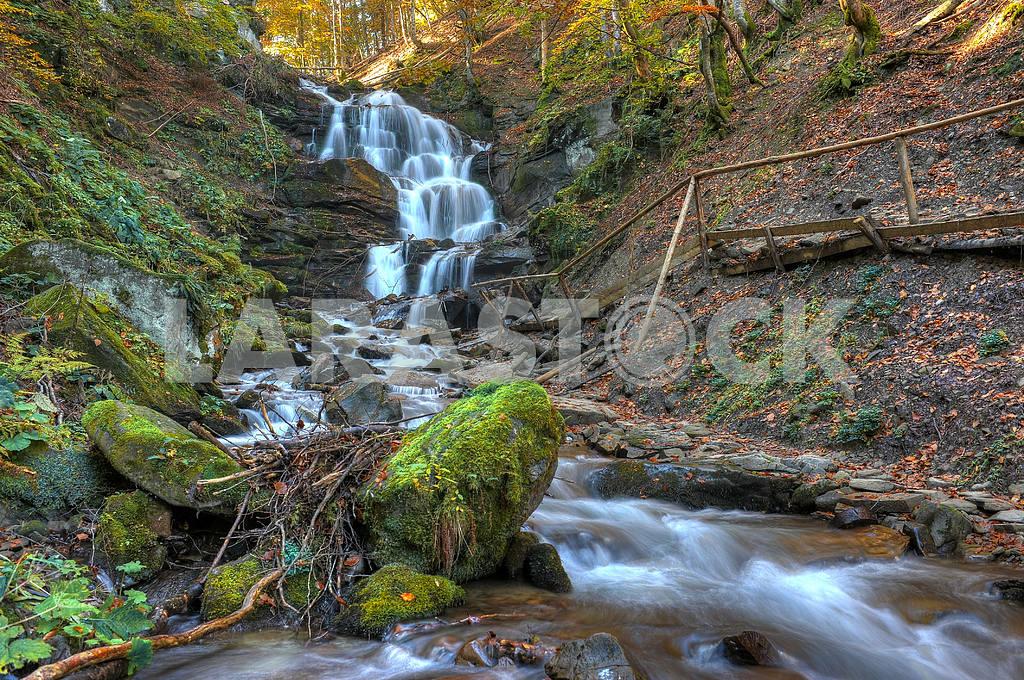 Falls in wood — Image 2648