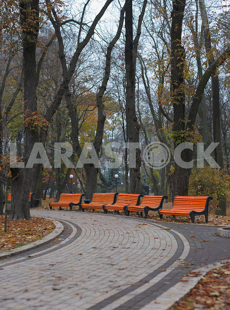 Benches in city park — Image 2657