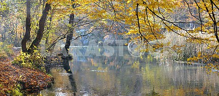 Mountain river in beechen autumn wood