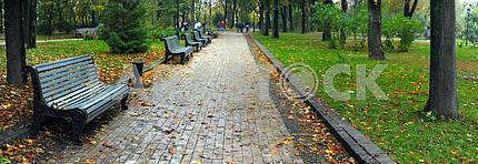 Benches in city park