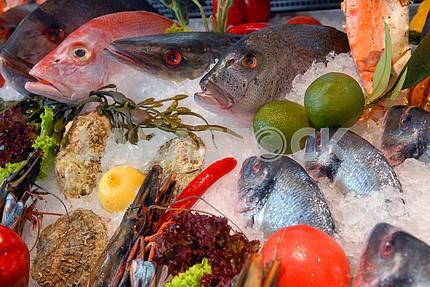 Show-window of fish restaurant
