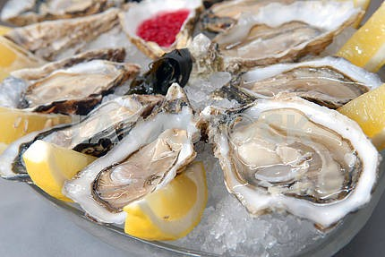 Oysters in ice with a lemon