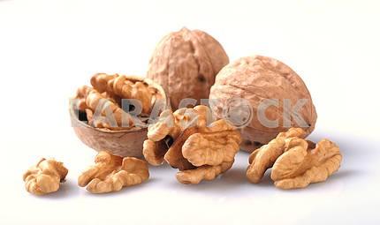 Орех оболочки