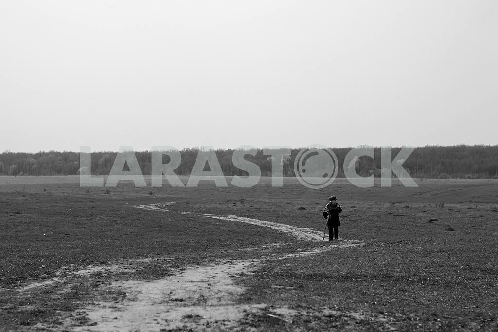 Landscape — Image 28496