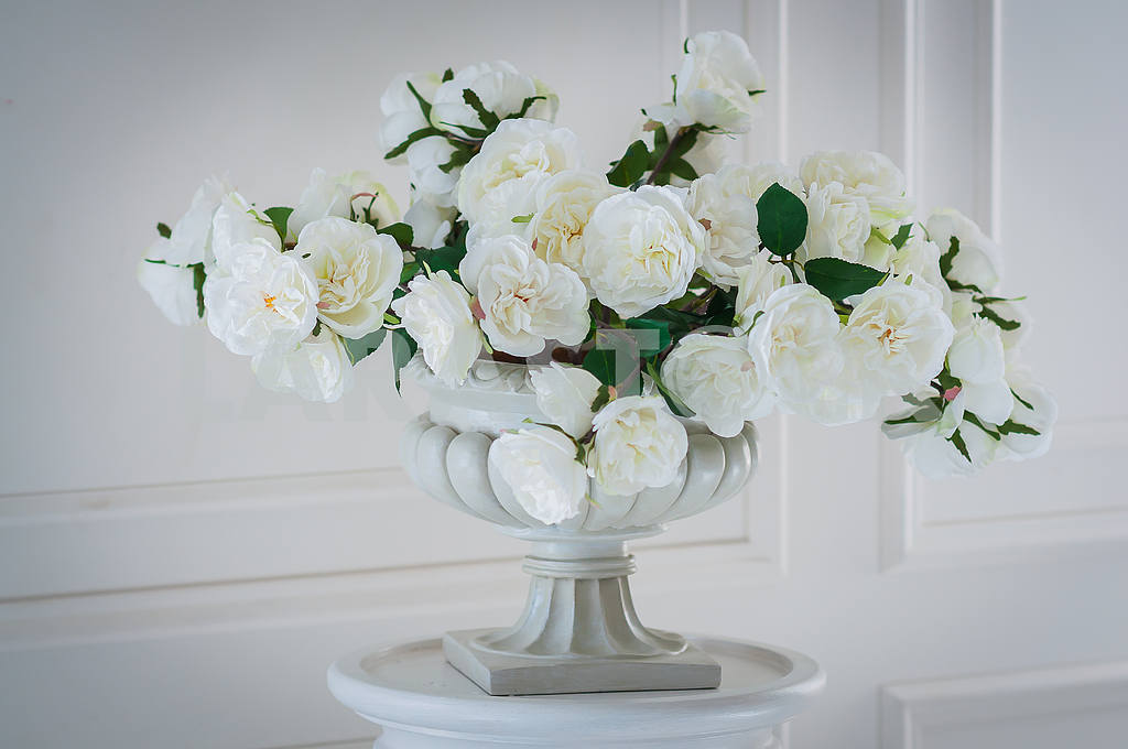 White Flowers in white vase — Image 28924