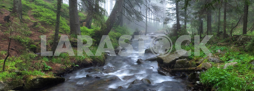 The current river the Prut in a fog
