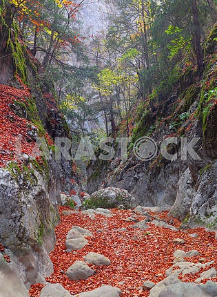 Ущелье Гранд-Каньон Крыма