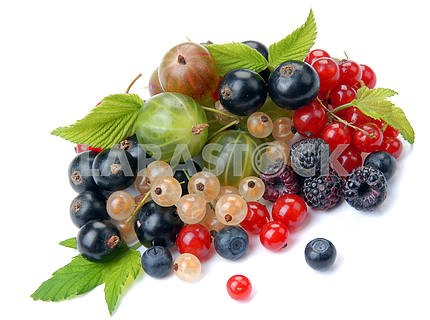 Summer berries with leaves