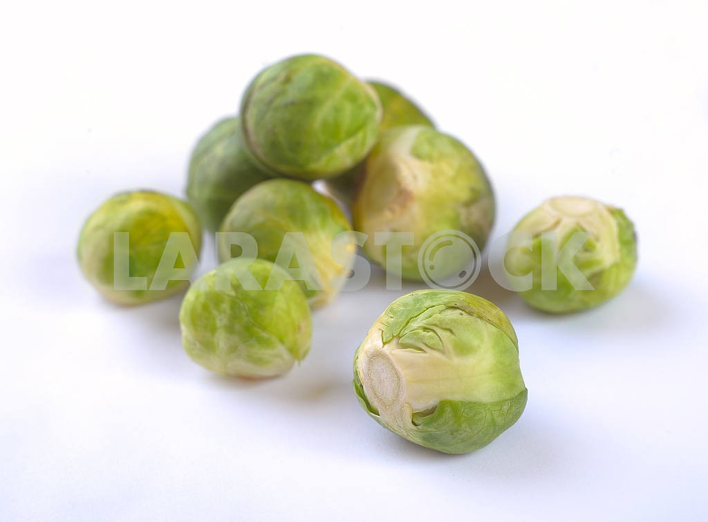 Brussels sprout — Image 3032