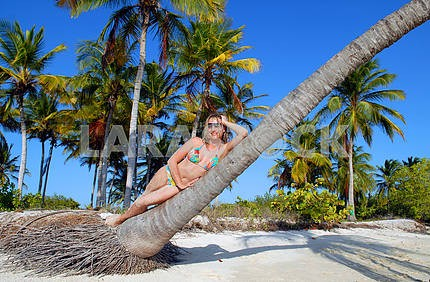 The girl on a palm tree