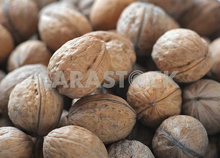 Куча спелых грецких орехов