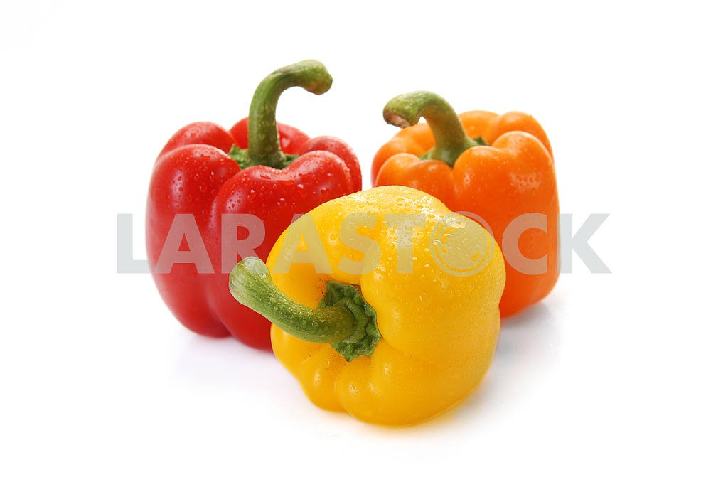 Pepper a paprika with water drops  — Image 3078
