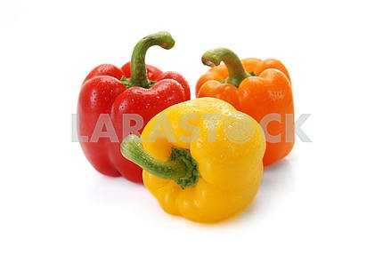 Pepper a paprika with water drops