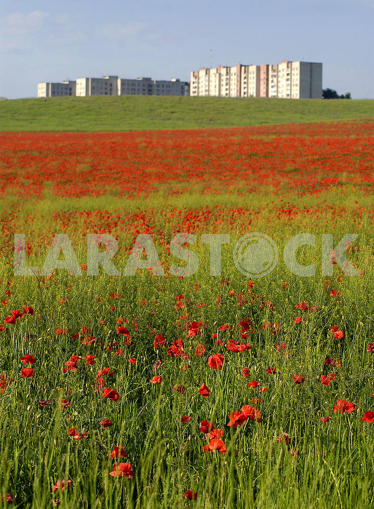 Rivne — Image 31492