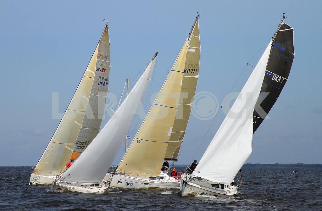 Wind Master Regatta 2011 — Image 31627