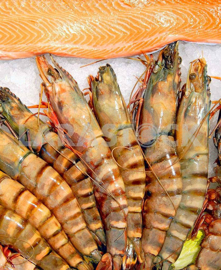 Royal shrimps and fillet of a trout — Image 3235