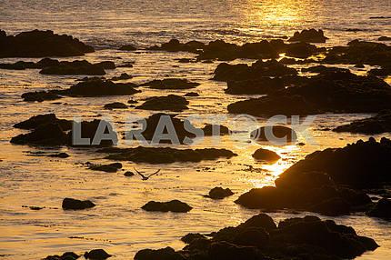 Залив Монтерея на закате