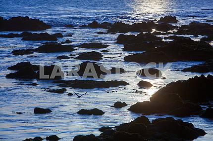 Залив Монтерея на рассвете