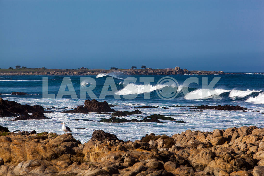 Waves on the shore of the Pacific Ocean — Image 32836