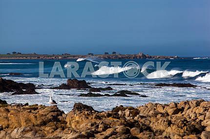 Волны на берегу Тихого океана