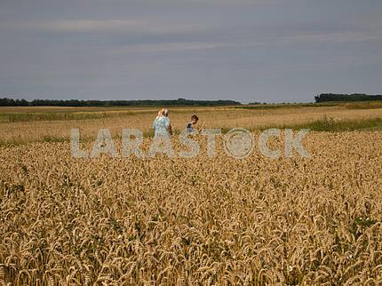 Созрел урожай