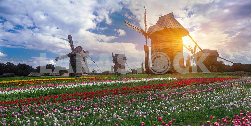 Wooden wind mill — Image 3287