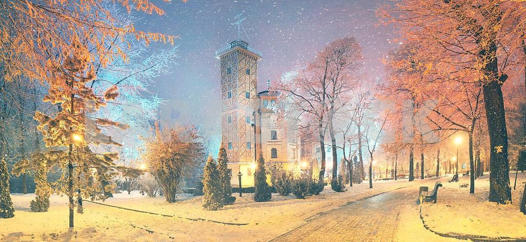 Mariinsky garden during inclement weather — Image 3333