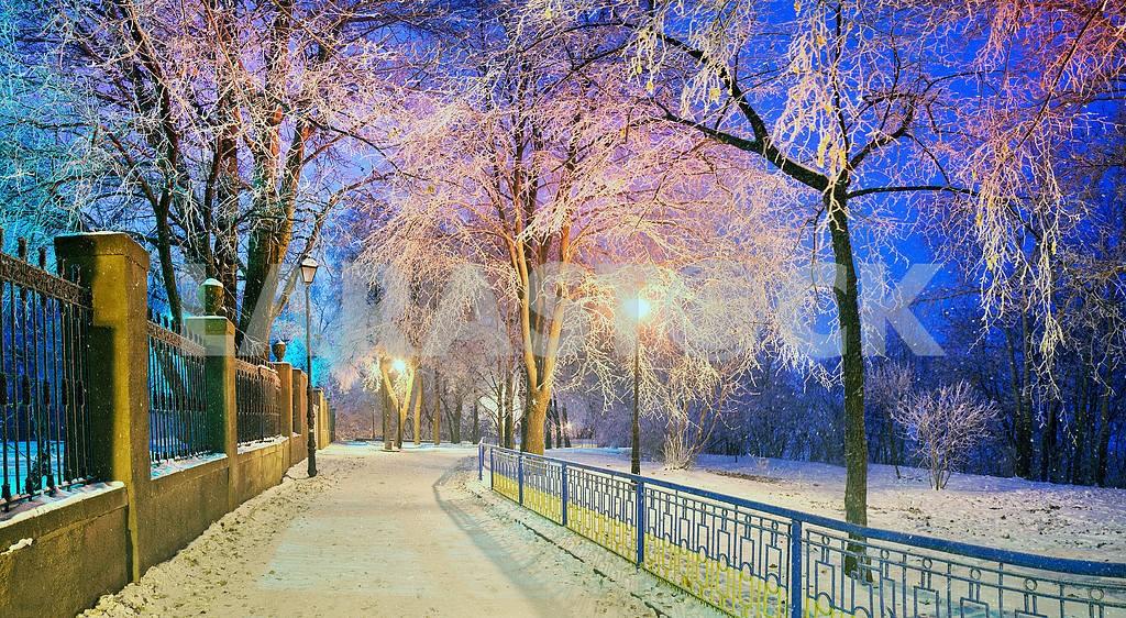 Mariinsky garden during inclement weather — Image 3335