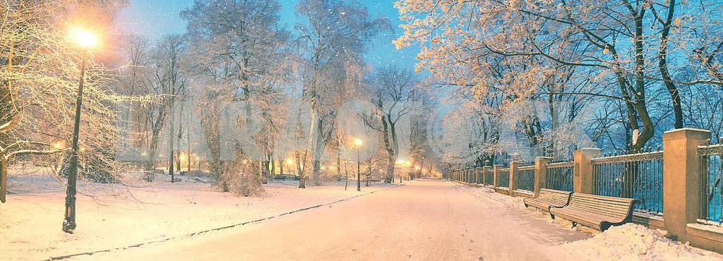 Mariinsky garden during inclement weather — Image 3341