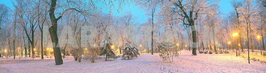 Mariinsky garden during inclement weather — Image 3349