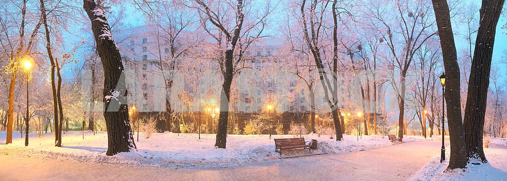 Мариинский сад во время ненастной погоды — Изображение 3353