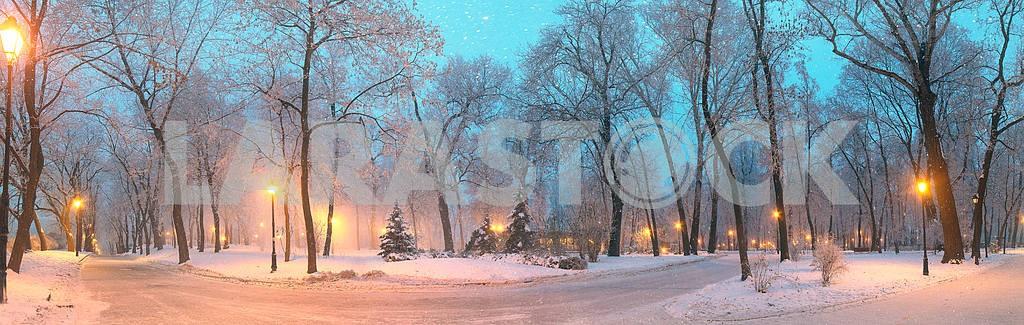 Мариинский сад во время ненастной погоды — Изображение 3355