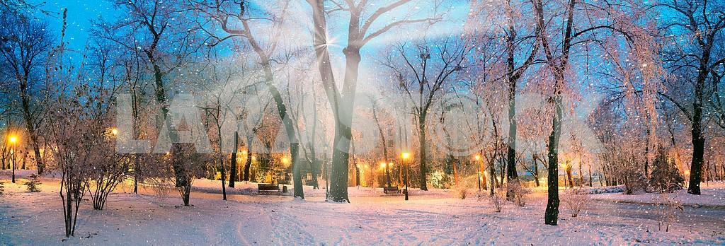 Rays snow star — Image 3376