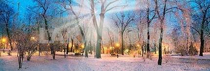 Лучи звезды снег