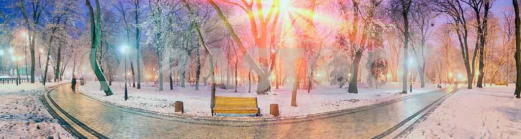 Rays snow star — Image 3380