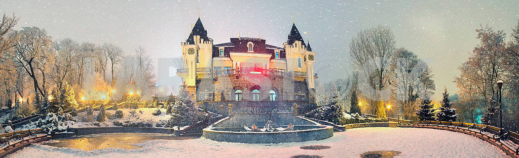 Mariinsky garden during inclement weather — Image 3417
