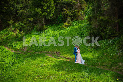 Wedding in mountains, a couple in love, mountains background,