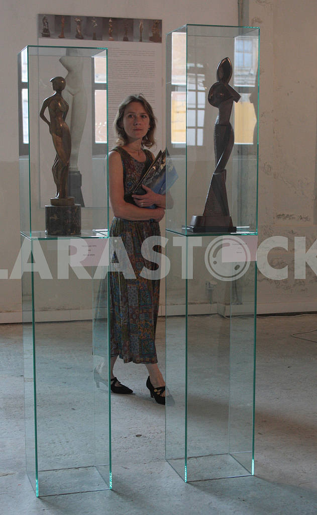 Girl examines the sculptures — Image 34890