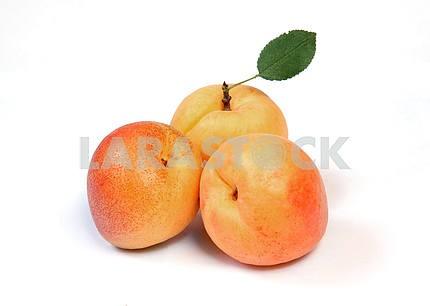 Apricotd