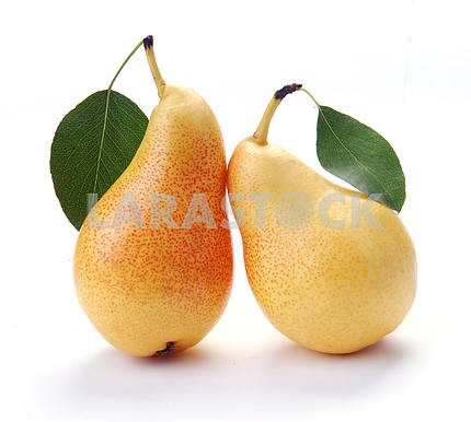 Pears and leaves