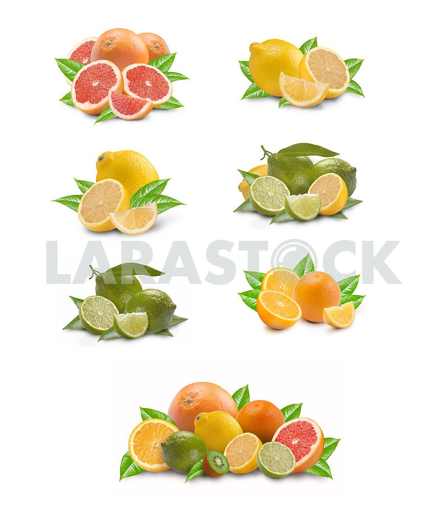 Collection of citron fruit — Image 3626
