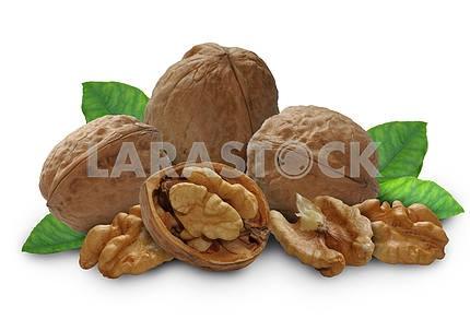 Орех с листьями и оболочки