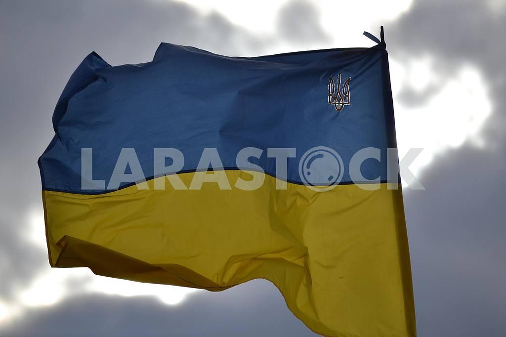 Флаг Украины в зоне АТО — Изображение 36899