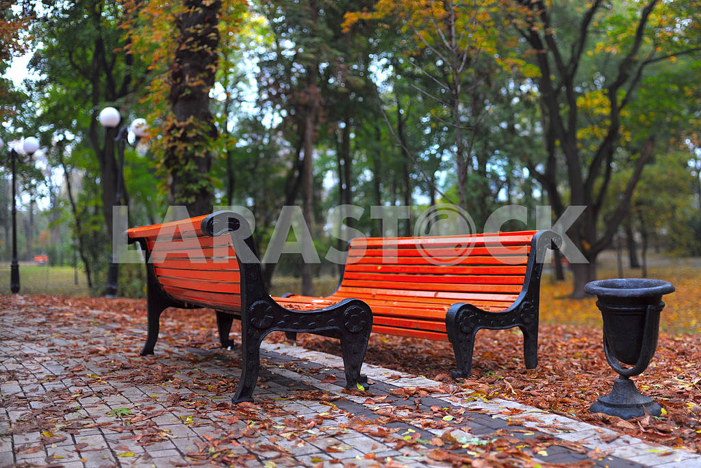 Benches in city park — Image 3786