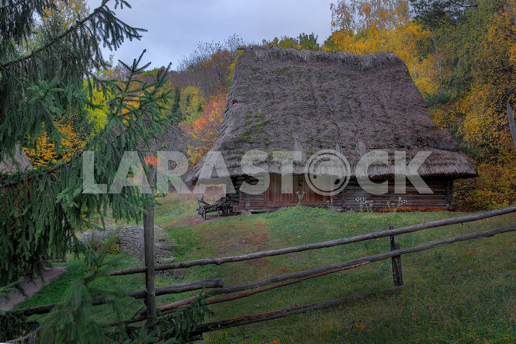 House of Carpathians with cart — Image 3806