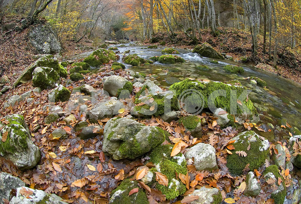The mountain river in gorge of the Grand Canyon of Crimea — Image 3808