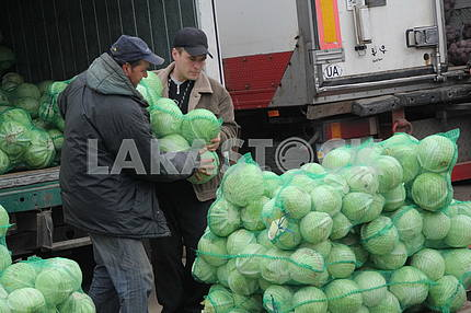 Trade of cabbage on the wholesale market in Kiev