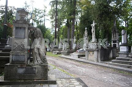 Alley in Lychakiv Cemetery