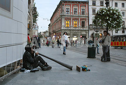 Street musician in Lviv