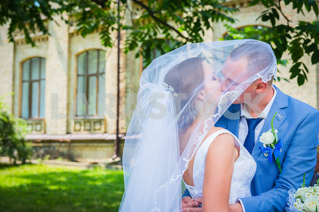 Bride and groom kisses tenderly in the shadow of a flying veil — Image 38646